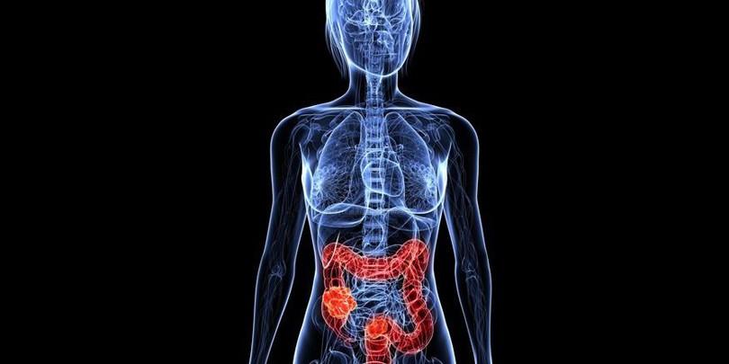 Probiotiques – Dangers Alimentaires