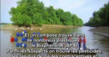 Bisphenol A, Fred Vom Saal