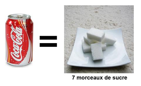 Canette de Coca-Cola équivalent en morceaux de sucre