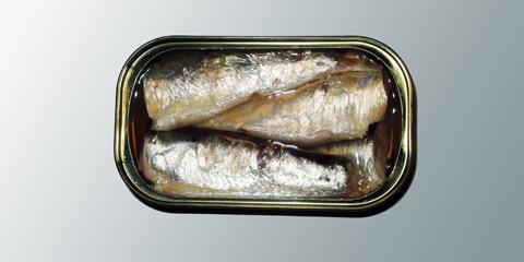 boite-de-sardines-casino