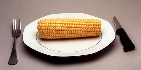 Maïs Non OGM