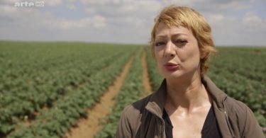 Documentaire : La pomme de terre n'a pas la frite