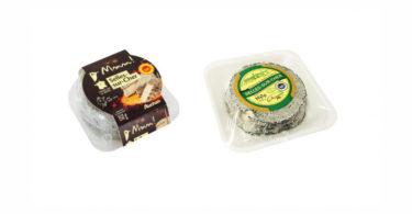cheese Salmonella