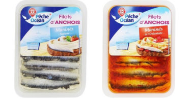 anchovies-and-a-marine-the-East-and-nets-and-marine-kind-anchovy
